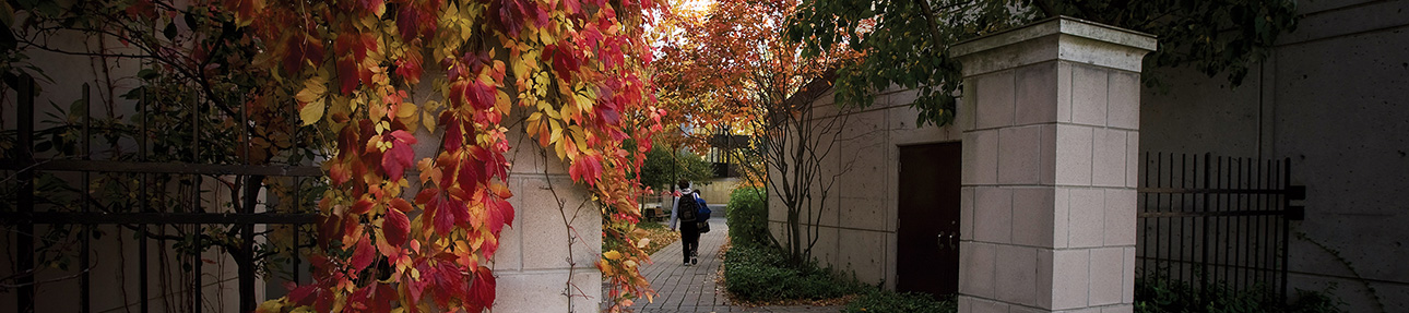 [campus in fall]