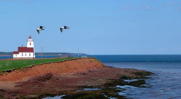 lighthouse shoreline PEI
