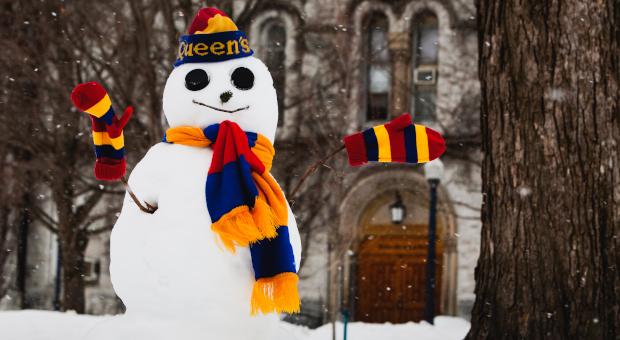 Tricolour Snowman