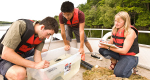 [Student field work at Queen's biology station]