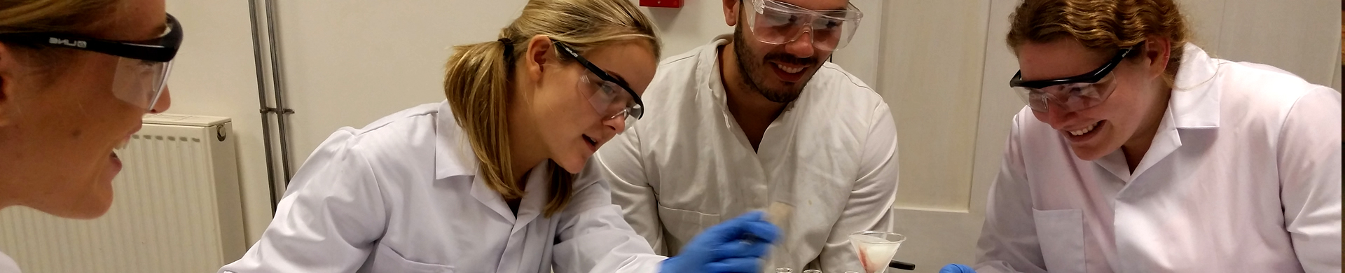 chemistry degree at queen's university