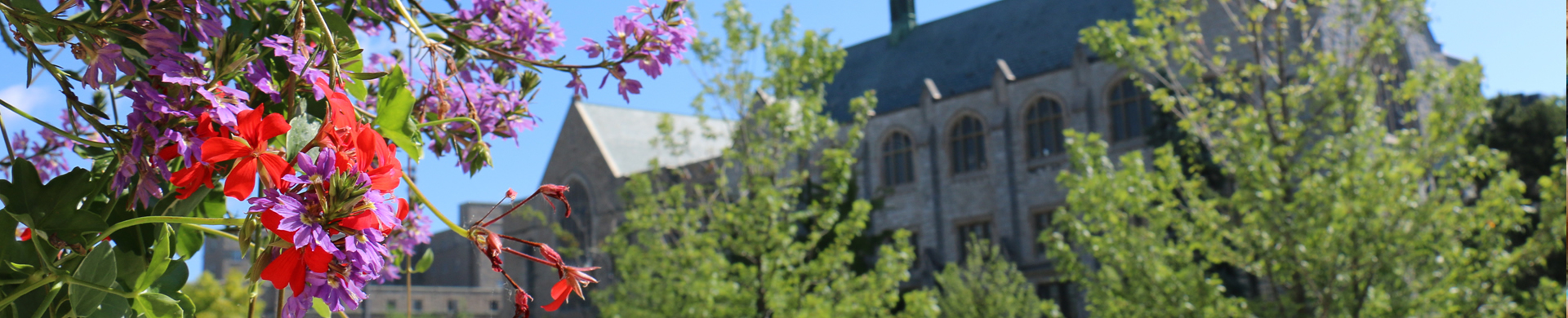 Changes to your Degree Program, Plan or Certificate at Queen's University Arts and Science
