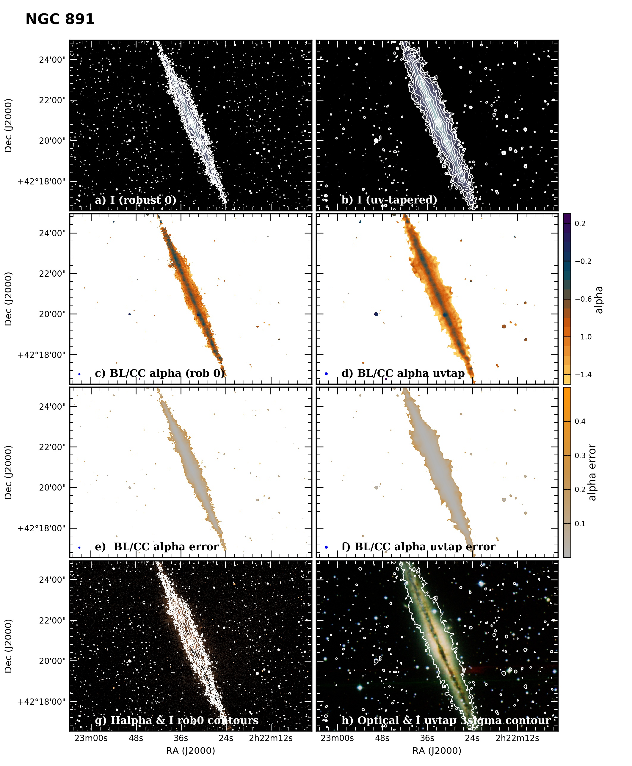 Panel image of NGC891 from B configuration data release III (Irwin et al. 2019)