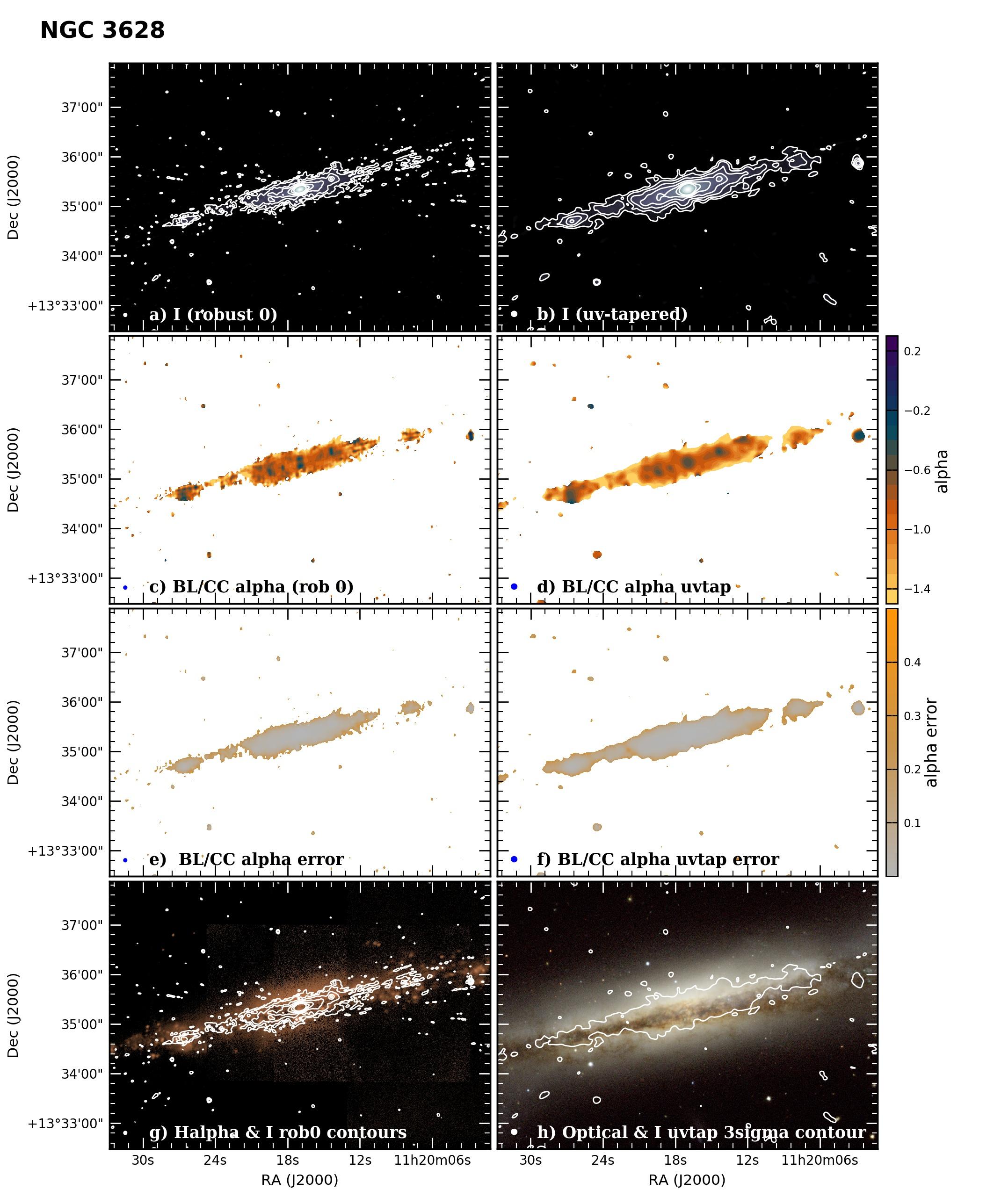 Panel image of NGC3628 from B configuration data release III (Irwin et al. 2019)