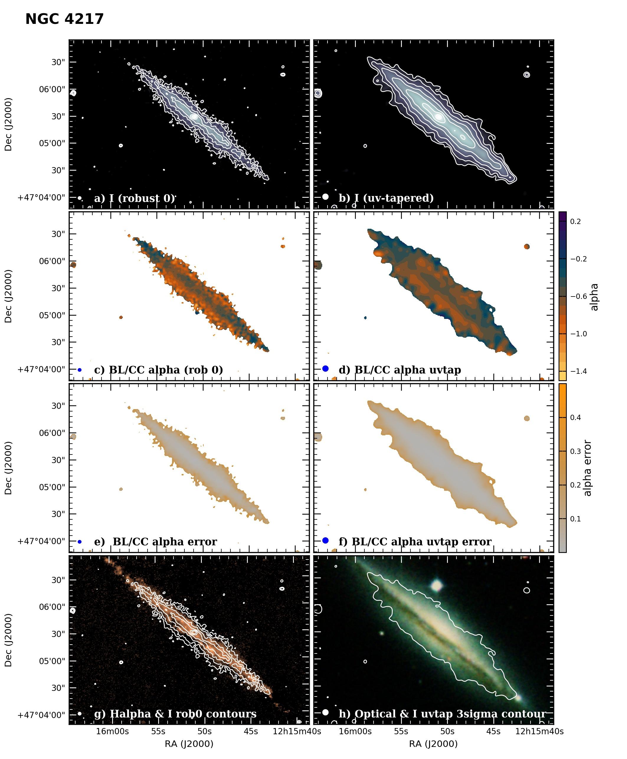 Panel image of NGC4217 from B configuration data release III (Irwin et al. 2019)
