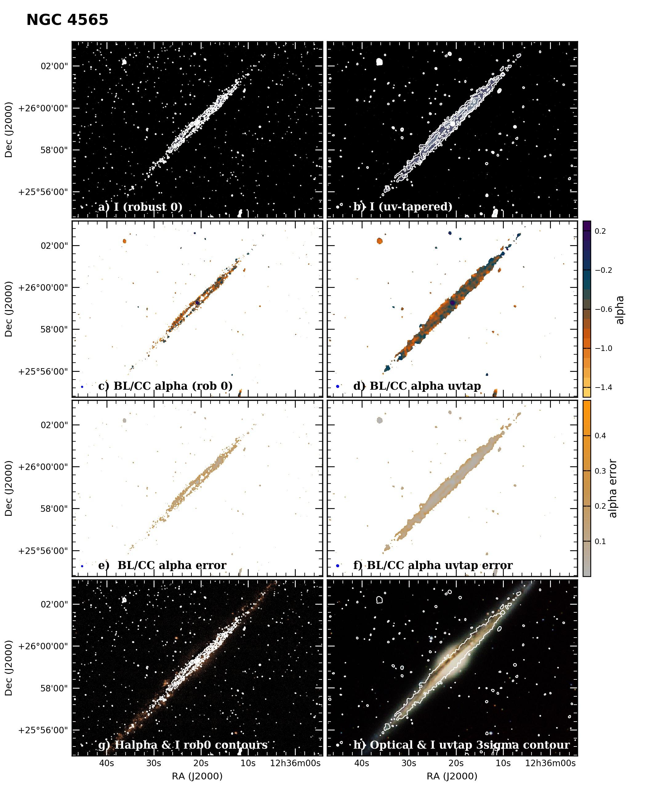 Panel image of NGC4565 from B configuration data release III (Irwin et al. 2019)