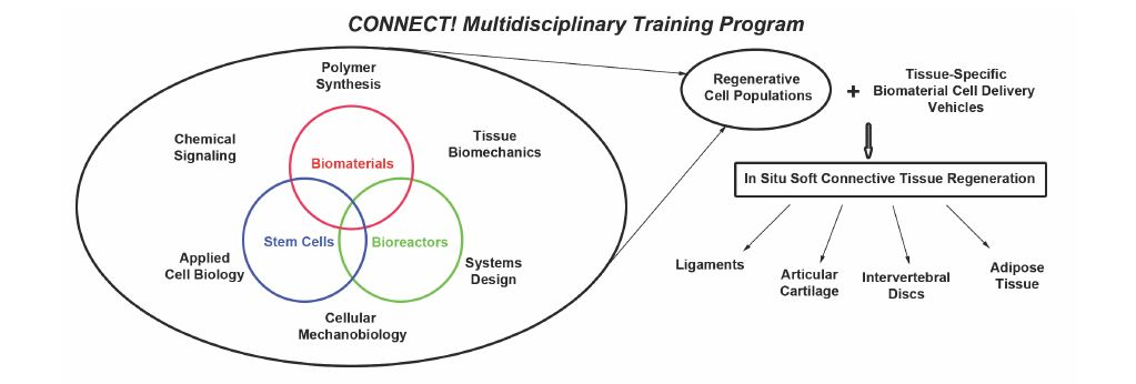 CONNECT! Multidisciplinary Training Program Overview and Framework