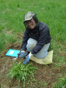 Amanda is a first year PhD in Biology at Queen's. Scheduling meetings with her in the summer is tough as she's always out in the field (see pic).