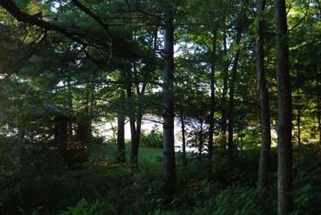 A view of Elbow Lake Nature Conservancy of Canada Reserve from Queen's University Biological Station website