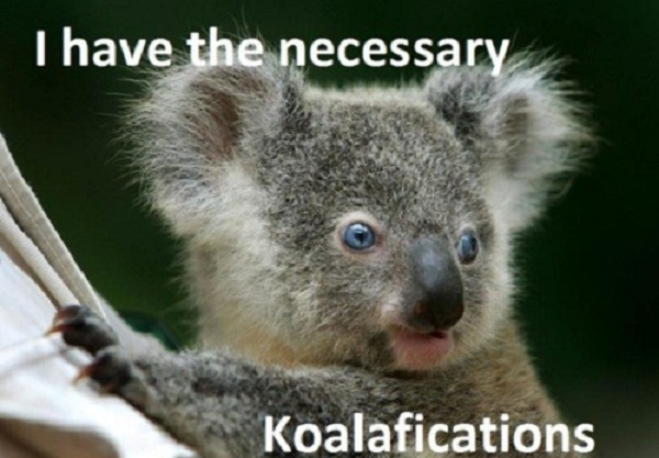 "Most cover letter humour is about job cover letters, rather than journal submission cover letters, so just replace ""I"" with ""my paper"" and ""koalafications"" with ""koala the aims of your journal"""