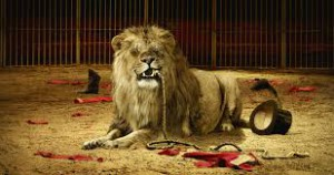 You eat the lion, or the lion eats you?