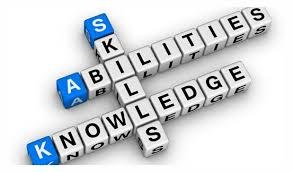 Internship: the intersection of skills, abilities, and knowledge
