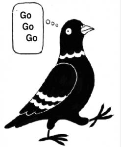 gogogo
