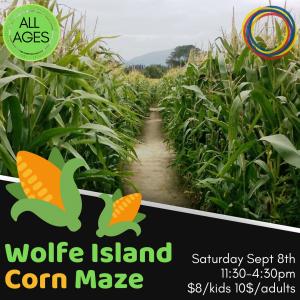 Wolfe Island Corn Maze (2)