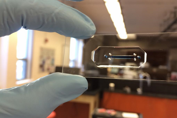 Microscope slide with a channel to circulate flow