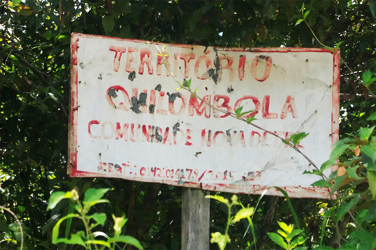 A red and white Sign in the jungle.