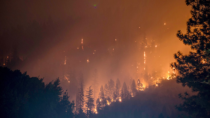 The Conversation Fighting Historic Wildfires Amid Bad Ideas