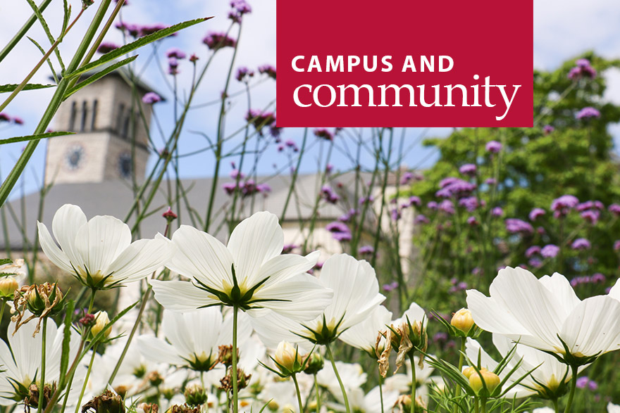 [photo of white flowers blooming on campus]