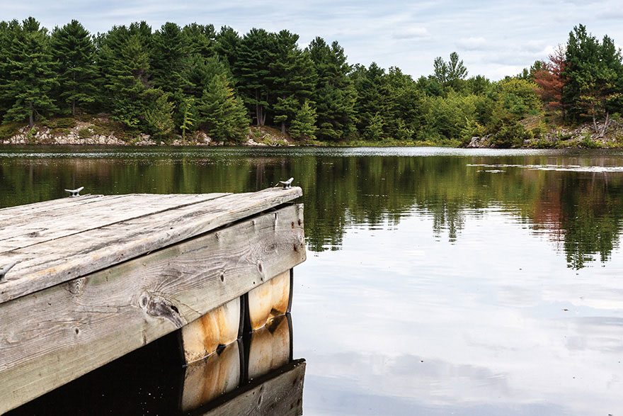 [photo of a dock overlooking a lake with trees in the background]