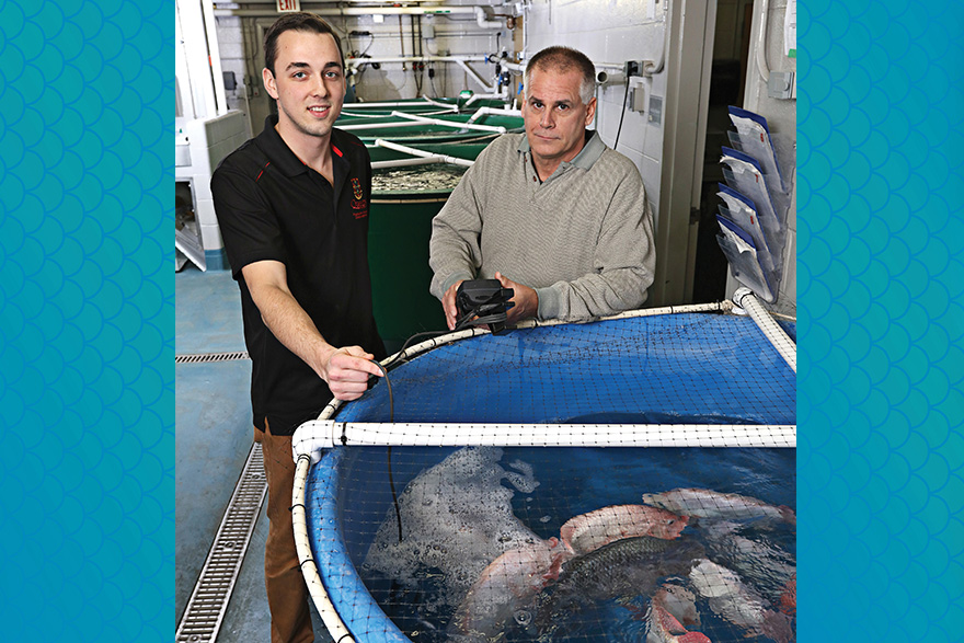 [photo of Connor Elliott and Bruce Tufts at the Freshwater Fisheries Conservation Lab at Queen's]