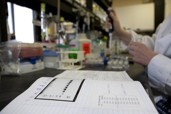 Queen's scientists receive millions in funding