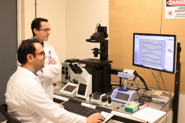 Assistant Professor of Chemical Engineering Carlos Escobedo and PhD candidate Saeed Rismani Yazdi analyzing MTB behaviour in the laboratory.