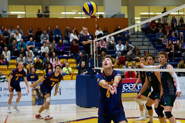 Gaels volleyball teams put up a perfect weekend