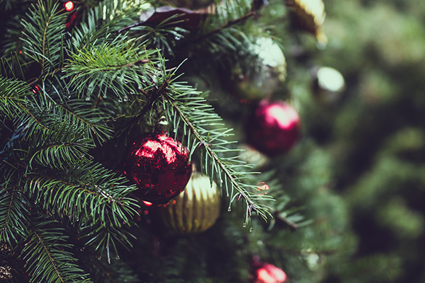 Is it better to buy a real Christmas tree or a fake one?