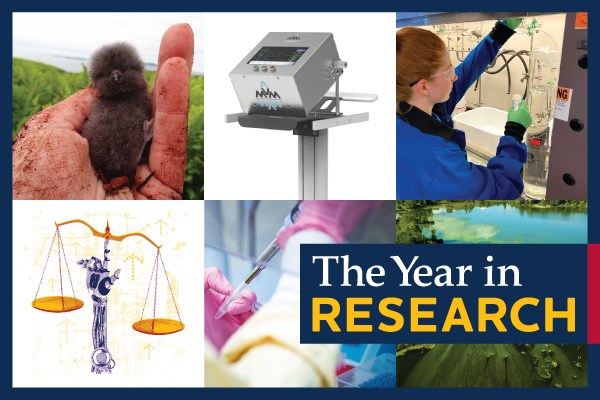 2020: The Year in Research