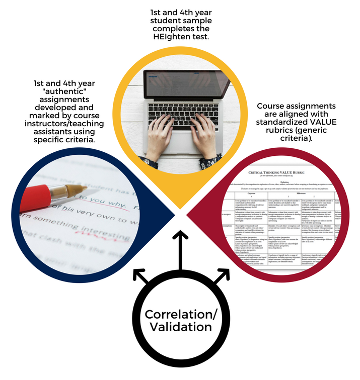 "Graphic displaying the triangulation approach. 1st and 4th year ""authentic"" assessments are developed and marked by course instructors/ teaching assistants. Course assignments are aligned with standardized VALUE rubrics. The standardized HEIghten test is used in order to correlate and validate results."