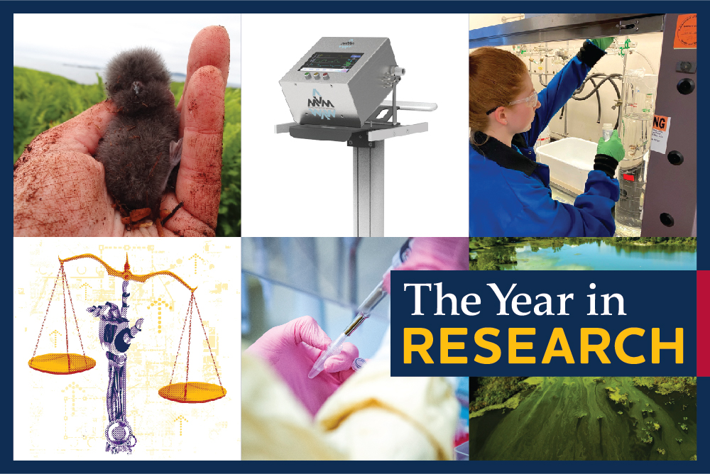 [The Year in Research]