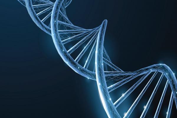 [Illustrative image of DNA strand]