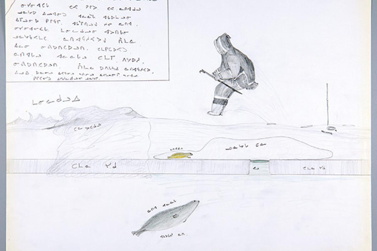 [drawing by Cornelius (Kooneeloosee) Nutarak]