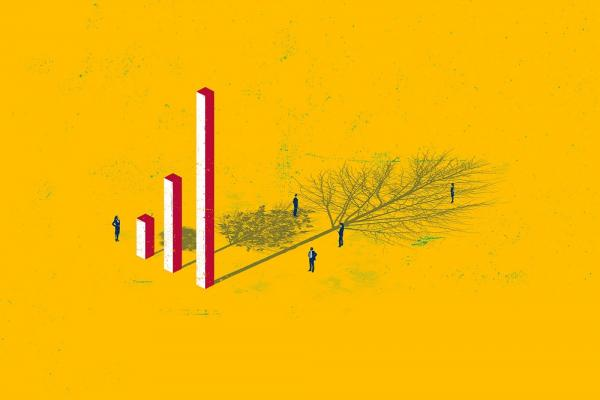 [Illustration of bar chart and mirrored tree by Gary Neill]