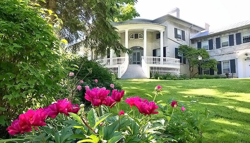 [Peonies in front of Summerhill]