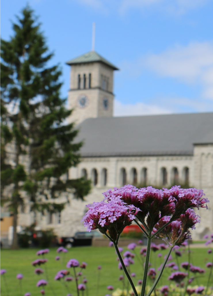 Purple flowers in front of Grant Hall.