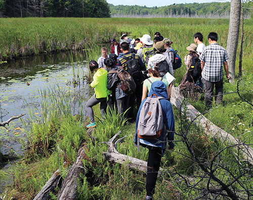 [students and instructors in a marsh]