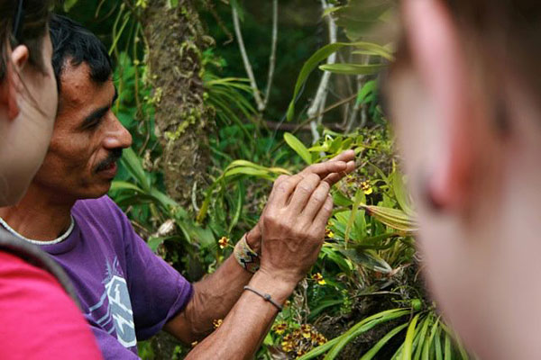 [A local expert helping students to examine the flora and fauna of Costa Rica]